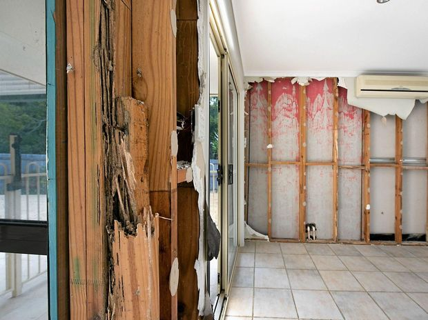 Beautiful Buderim home destroyed by termites