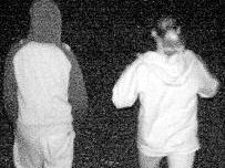 Offenders images may help solve Oakey SHS crime