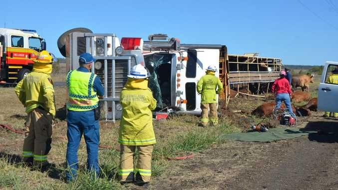 Cattle truck roll over west of Emerald at around 10am. Photo Emma Boughen / Central Queensland News