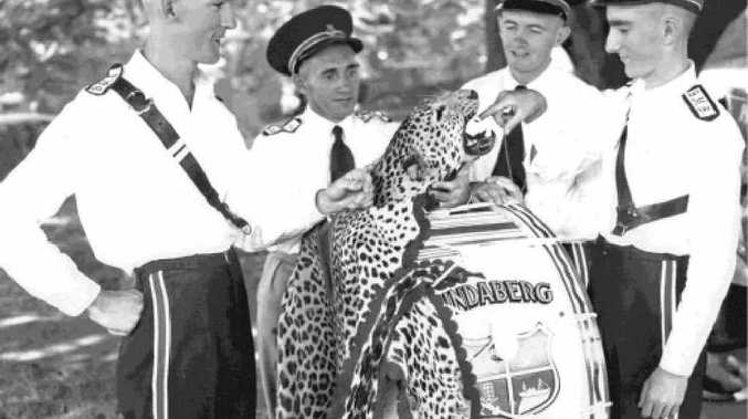 K. Ballantyne (side drum), G.Hardy (bass drum), K. Wendt (drum major) and B. Mees (side drum) with the cheetah skin in 1952.