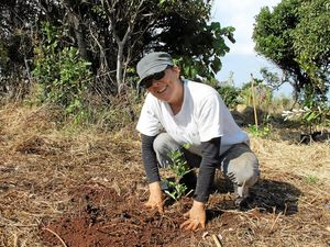Headland home to 1000 new trees