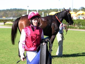 Coast trainer hopes McEvoy factor makes a difference