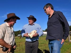 Glenn Lazarus speaks up for dairy farmers