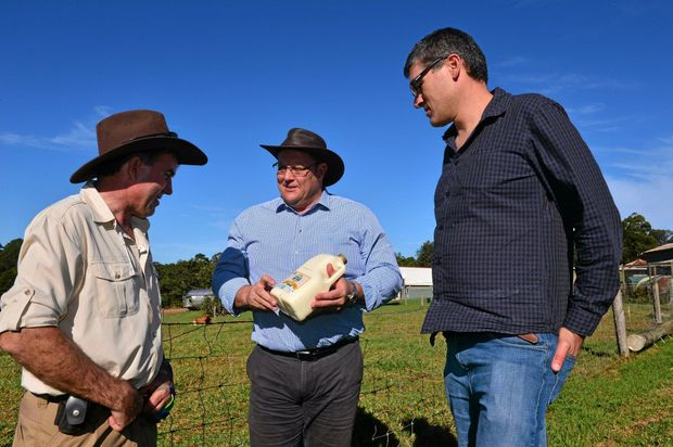 LAZO SPEAKS UP: Ross Hopper, Senator Glenn Lazarus and Eric Danzi discuss solutions to dairy farmers issues at Maleny Dairies.