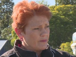 Hanson says many female domestic violence complaints 'frivolous'