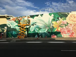 PHOTOS: Huge mural painted on Woolies wall