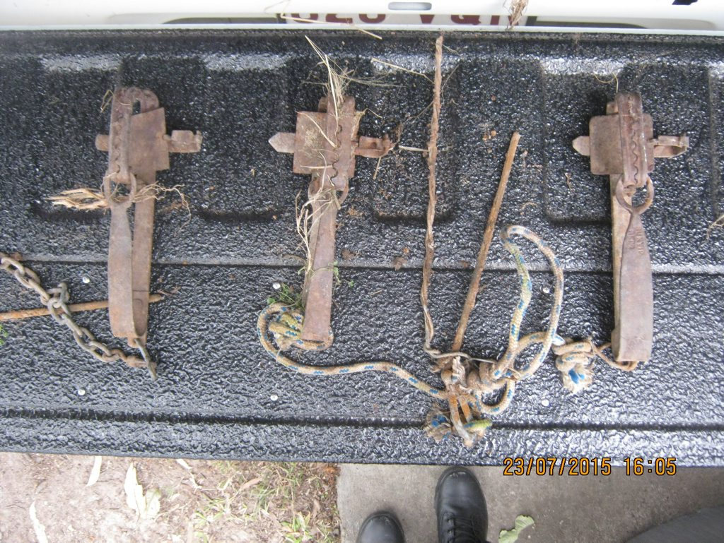 FOUND: Three traps, usually used to catch rabbits, found on the Bako's property by the RSPCA.