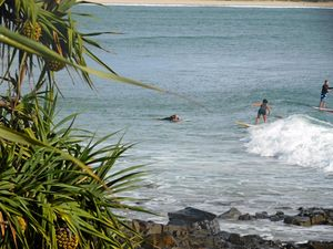 A swell coastal upgrade for Noosa parkland