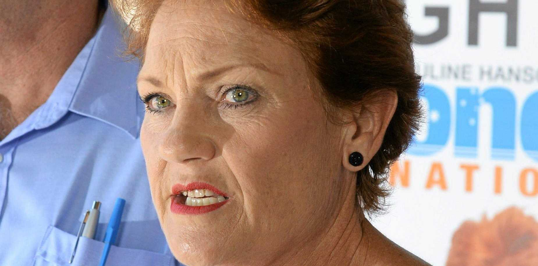 """ONE NATION: Pauline Hanson thinks too many women are making """"frivolous"""" domestic violence complaints."""