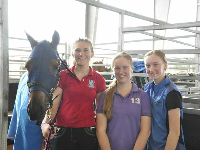 Bree Butcher, Samara Woolley and Amy Jeffries from the Gold Coast are competing at the Rockhampton Show. Photo Michelle Gately / Morning Bulletin