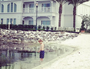 Mum's pics of son in water an hour before alligator attack