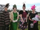 L-R Pam O'Brien, Kelly Newton, Laura Jarman and Jennifer Acton (Winner) at the Girls Grammar Rockhampton Race Day at Callaghan Park. Photo Liam Fahey / Morning Bulletin