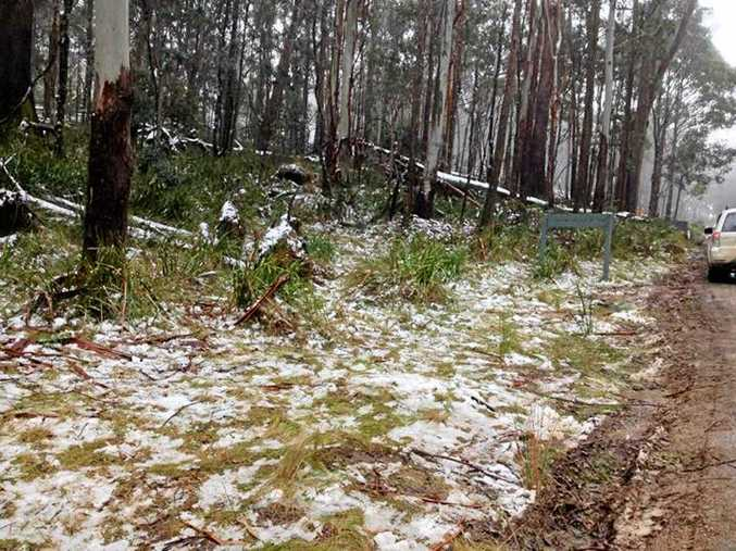 This weekend will be very cold and it will snow in parts, but not in Tenterfield which last saw snow in July 2015.
