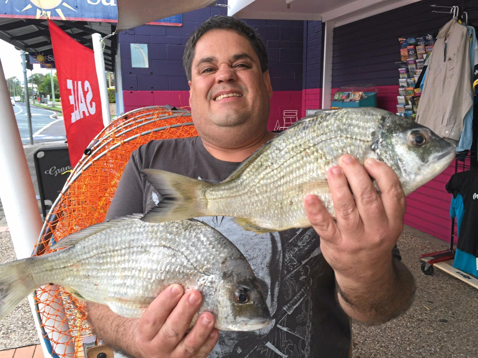 Craig Hobden with a few big Mooloolah river bream caught from the boat moorings.
