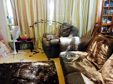 Vandals trashed the home from top to bottom.