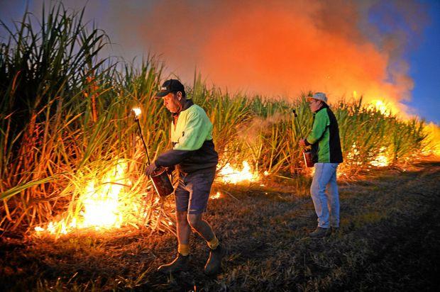 Cane farmer David Bartlett and farmhand Graeme Farrell burn off in Murwillumbah during a previous season.