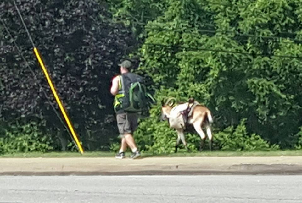 Steve Wescott is walking with his goat Miles across USA after he