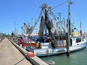 Tin Can Bay businessman rejects net fishing ban calls