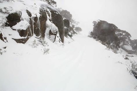 Snow at Thredbo