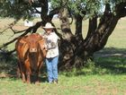 Gogango grazier Gloria Connor with Penny, a retired breeding cow, at their Gogango property. Photo contributed.