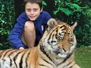 Year 4 class wins trip to Dreamworld to meet tigers