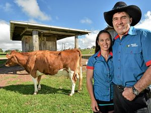 JOBS BOARD: Maleny Dairies among 10 firms hiring on Coast