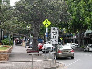 LETTER: Leave Caloundra's trees untouched