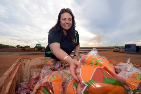 OFF ROAD ACCESS: Mortimer's Farm owner Shana Mortimer has relocated her sweet potato stall on directive of the Department of Transport and Main Roads. Photo: Max Fleet / NewsMail
