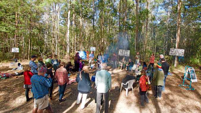 NO LOGGING: Protesters discussed logging plans for Tarkeeth Forest on Sunday.