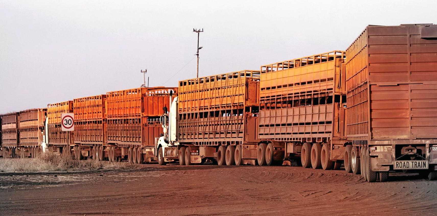 Bulk loading at Liveringa Station in the Kimberley.