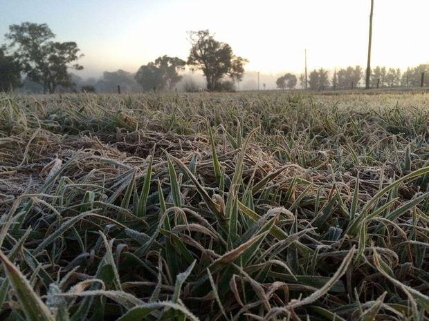 A frosty, foggy start in Warwick