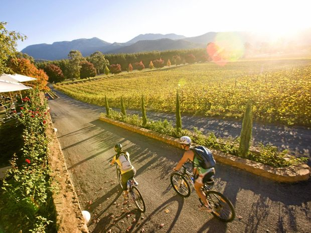 Exploring Boyntons Feathertop Winery in the north-east Victoria wine region by bike.