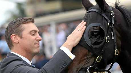 CONTENDER: Amexed with trainer Tony Gollan after the horse's recent win at Ipswich.