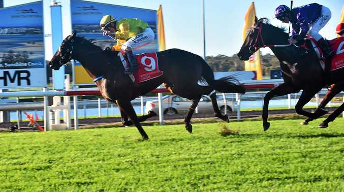 CHAMP: Robbie Fradd hits the line with Amexed to win the Caloundra Cup ahead of Jumbo Prince.