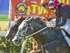 Just A Bullet (grey) and jockey Jerry Noske scoring a narrow win in today's Open Handicap at Clifford Park.