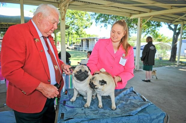 PUG LIFE: Bill Winter and Tymeeka Waters with their Pugs Die and Maddie at the CQ Toy Dog Club championships yesterday.