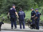 Canine police work near the scene of an explosion in Central Park, New York, Sunday, July 3, 2016. A firework that exploded when a 19-year-old unwittingly stepped on it Sunday in Central Park, seriously injuring his left foot, didn't appear to be designed to intentionally hurt people, police officials said.