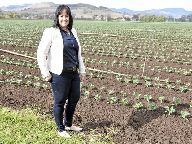 RURAL CHAMPION: Sharron Windolf from Windolf Farms in front of a broccoli crop in the Lockyer Valley.