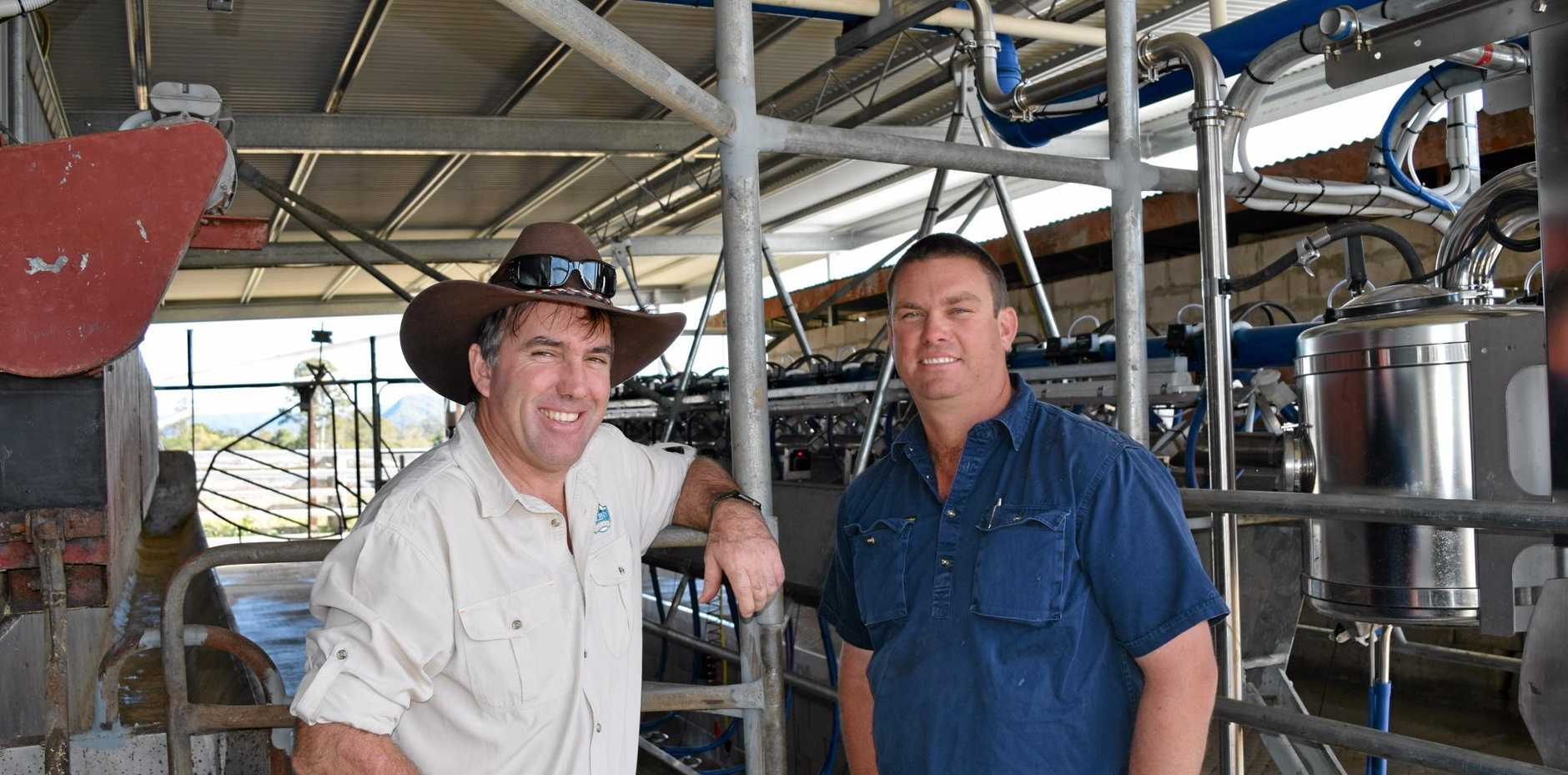 Maleny Dairies' Ross Hopper (left) and local farmer Jason Rozynski have partnered up to boost the local dairy industry