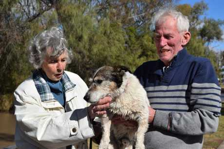 Lori and John Victorsen with their dog Monty. Photo Contributed