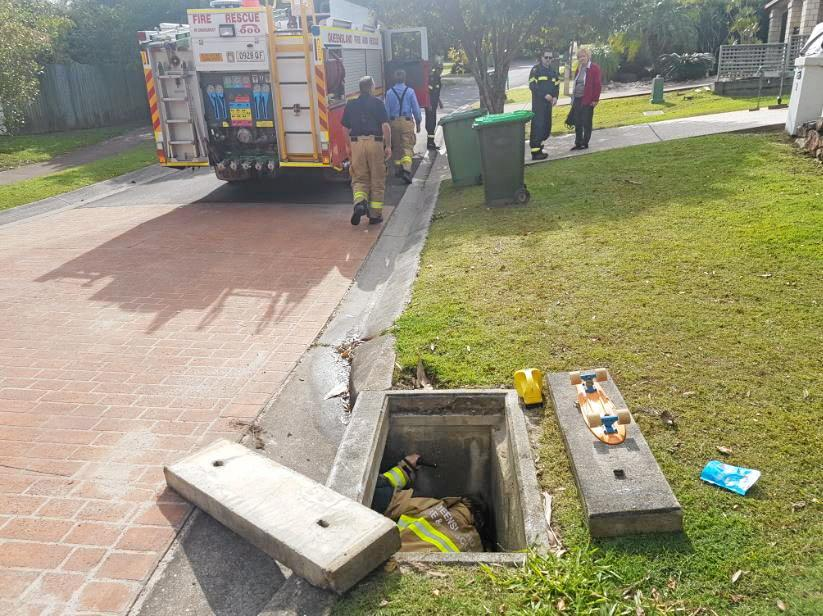 RESCUE OPERATION: Firefighters managed to retrieve Pharoah from the drain.