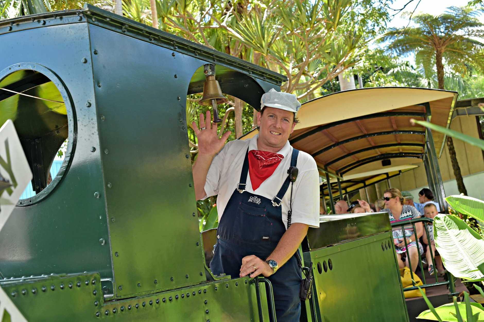 Holiday photos at the Ginger Factory. Train driver Ben Allanson  Photo: Warren Lynam / Sunshine Coast Daily