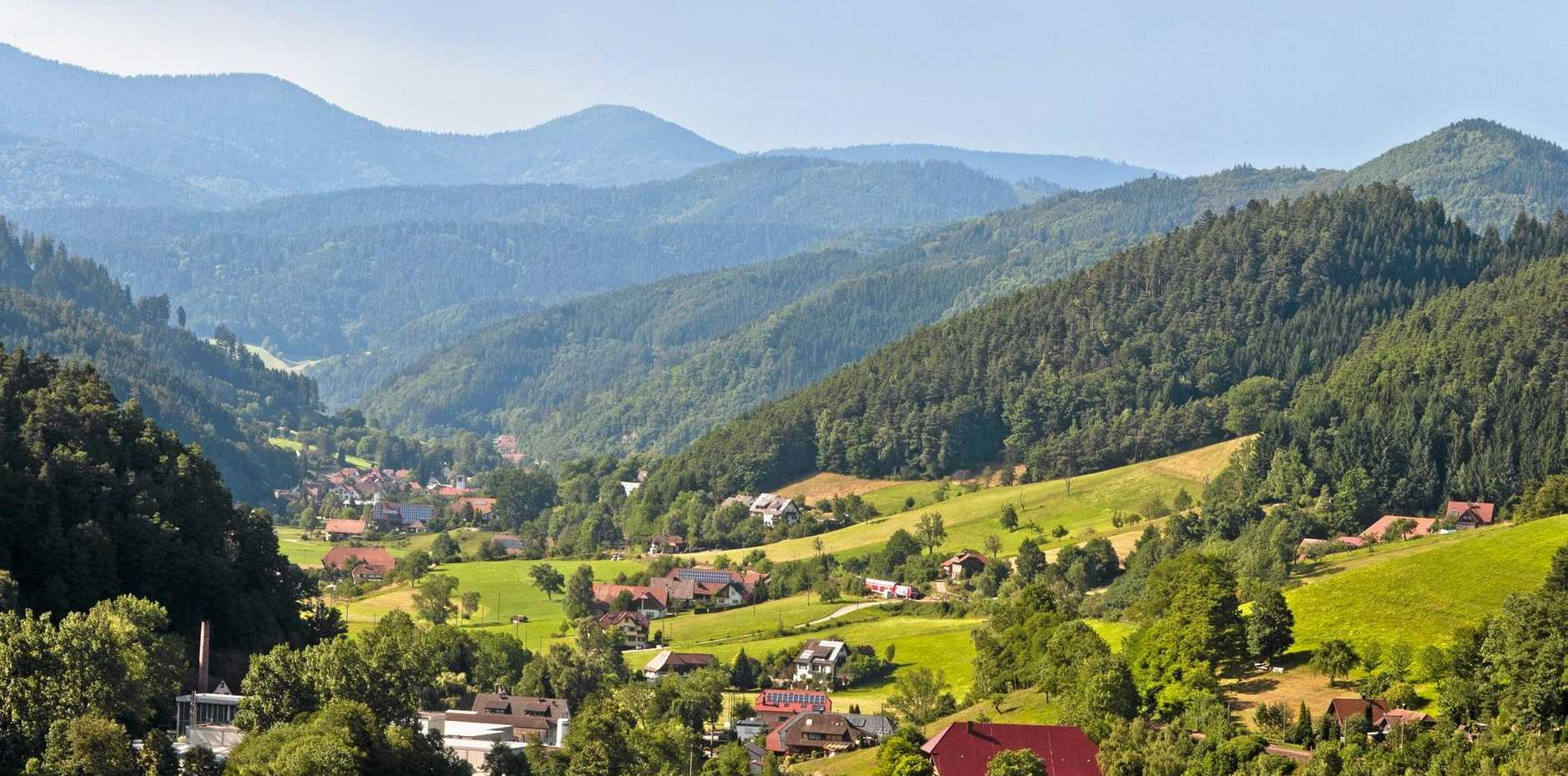 Gutachtal, Black Forest Valley, Schwarzwald, Germany. Expansive view of the beautiful, sunny  Gutach valley with green pasture fields, houses in traditional architectural style and dark green fir tree forest. Dark blue hills rise on the horizon. Horizontal color image with copy space at top.