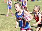 Queensland Touch Football 2016 Junior State Cup. U/10 girls Hervey Bay V. Dalby. Lanee Nolan (Dalby).