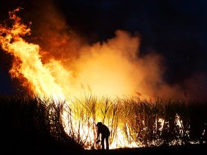 OUR SAY: Cane fires signal rural strength