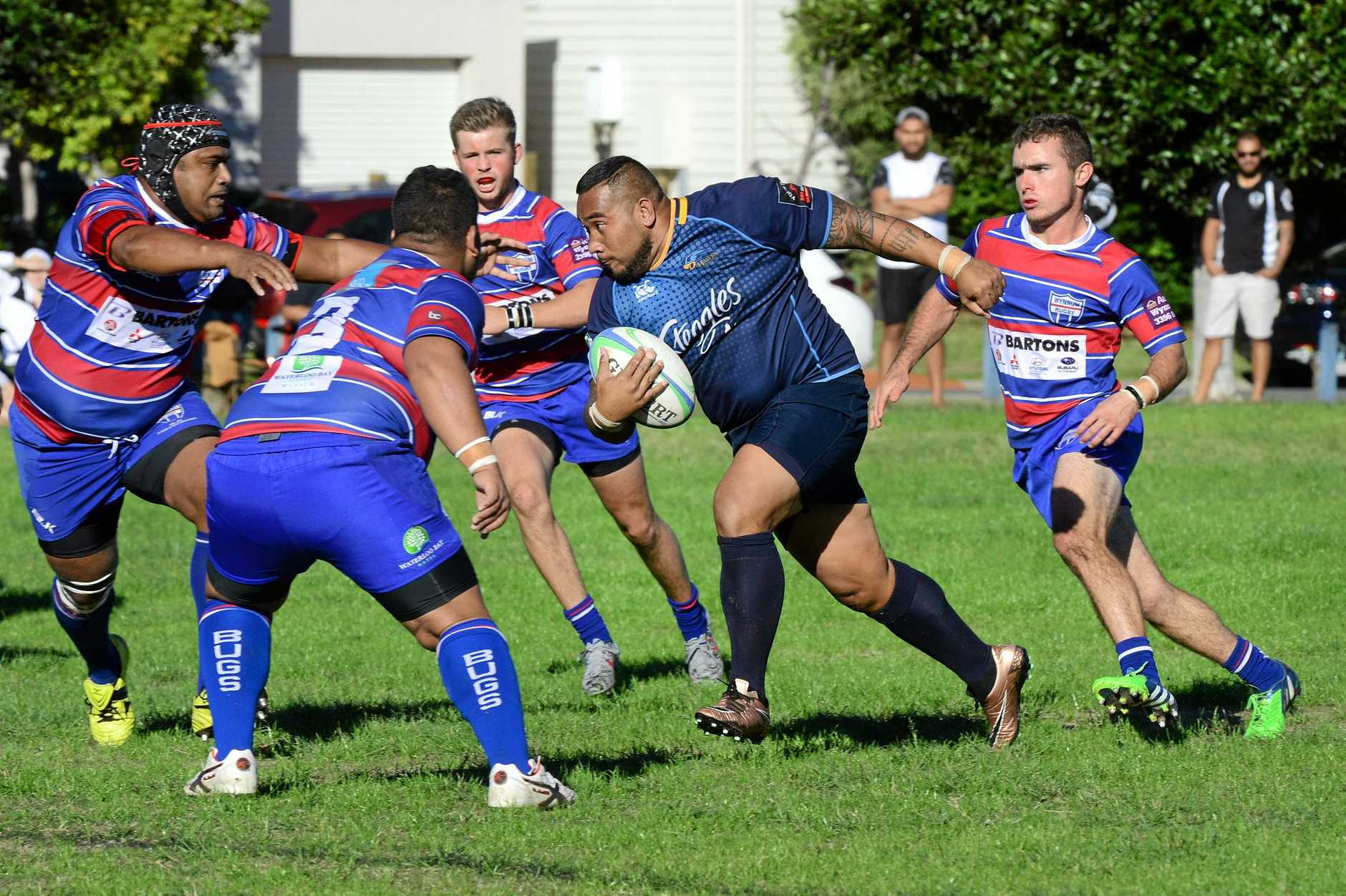 CLUB SPECIAL: Springfield will have their entire contingent of junior and senior sides in action this weekend.