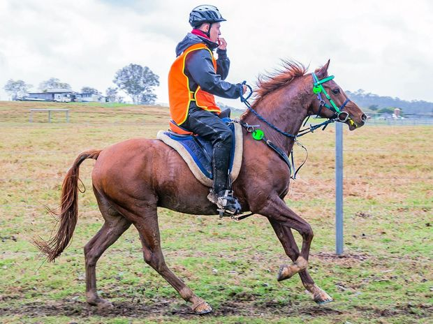 NATIONAL ENDURANCE CHAMP: Ben Hudson was the best rider at the titles at Imbil on Saturday.