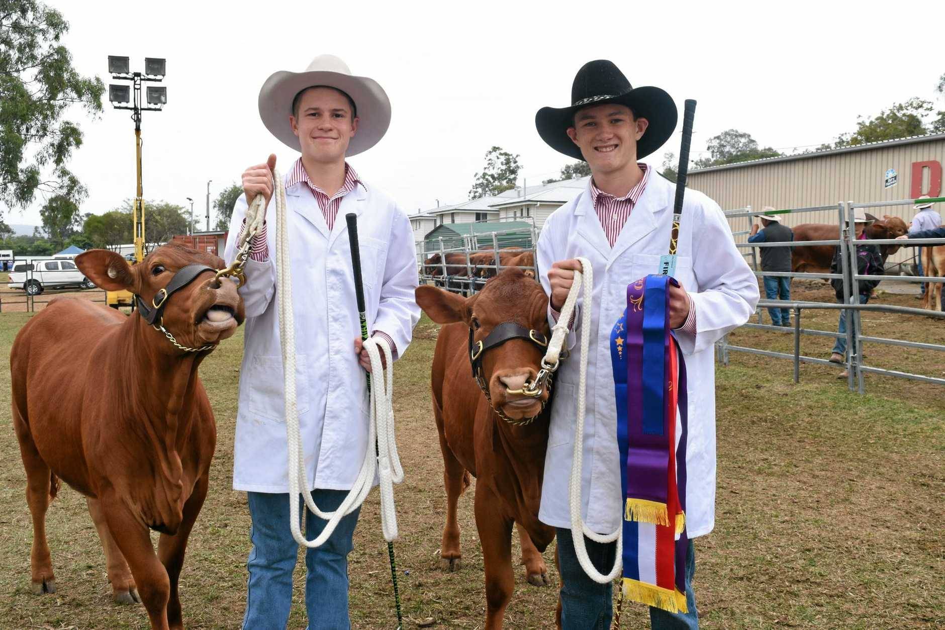 SHOW DAY: Ipswich Grammar students Mitchel Klein with Sinai Bridget and Nocholas Raine with Sinai Bernadette at the Gatton Show. Insets top: Jack Gallagher (left) and Kyron Lyndenmayer were ready for the weather. Inset bottom: Jason and Gwenda Malcolm travelled from Ipswich to check out the Gatton Show.