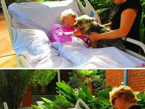 A heart-warming tale of an old dog and his new owners