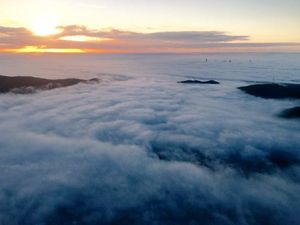 Flights cancelled as fog causes chaos at Brisbane Airport